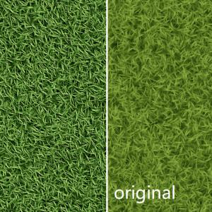 grass-1d0902fbade7ef81c