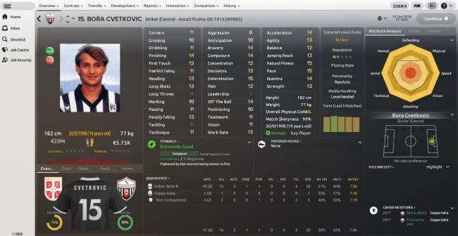 Bora Cvetkovic Overview Profile