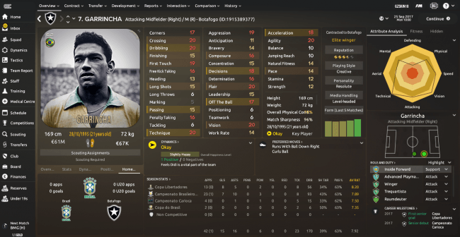 Garrincha_-Overview-Profile.png