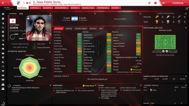 Juan Pablo Sorín Overview Profile