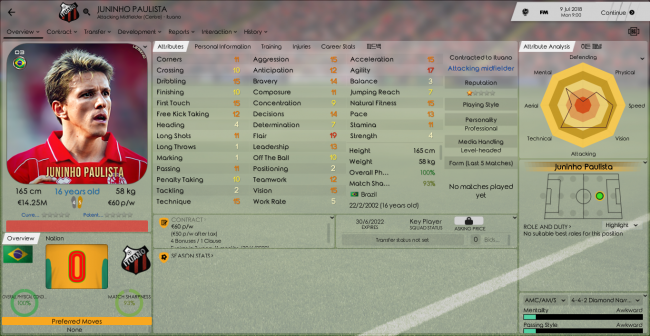 Juninho Paulista Overview Profile