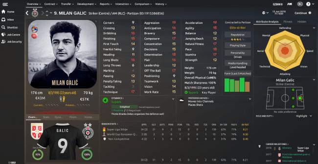 Milan Galic Overview Profile